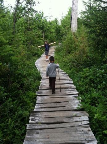 Trail to Shi Shi Beach