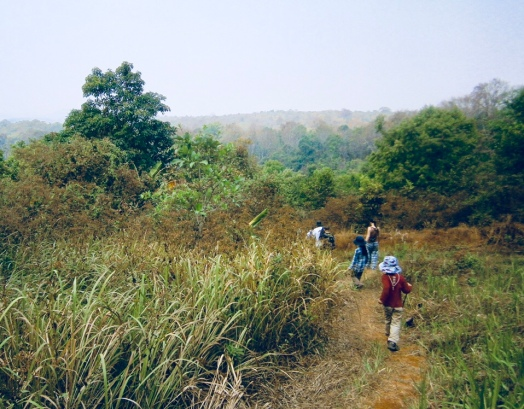 Enjoying protected wild forest, a disappearing resource in Cambodia and globally
